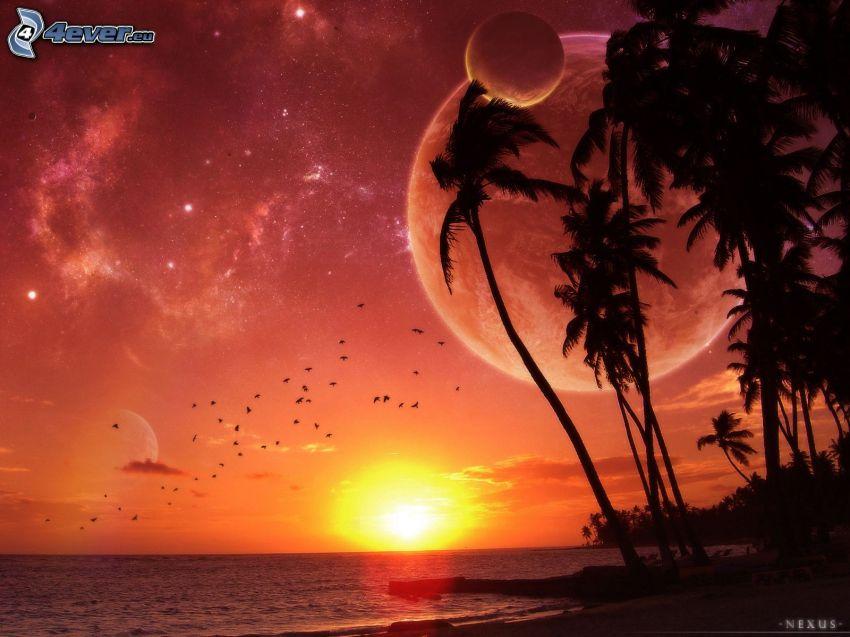 východ slnka, vesmír, hviezdy, mesiac, palmy na pláži