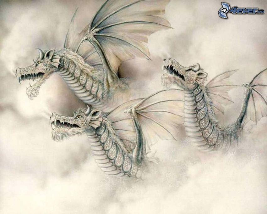 draky, biely drak, oblaky, Čína