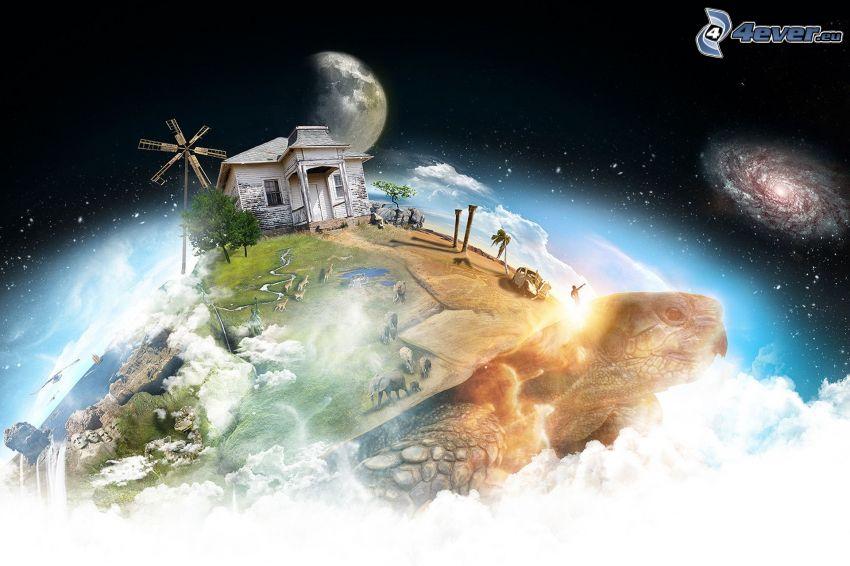 korytnačka, kreslený dom, vesmír
