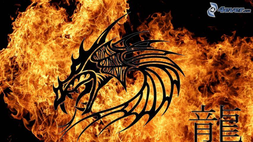 kreslený drak, oheň, čínske znaky