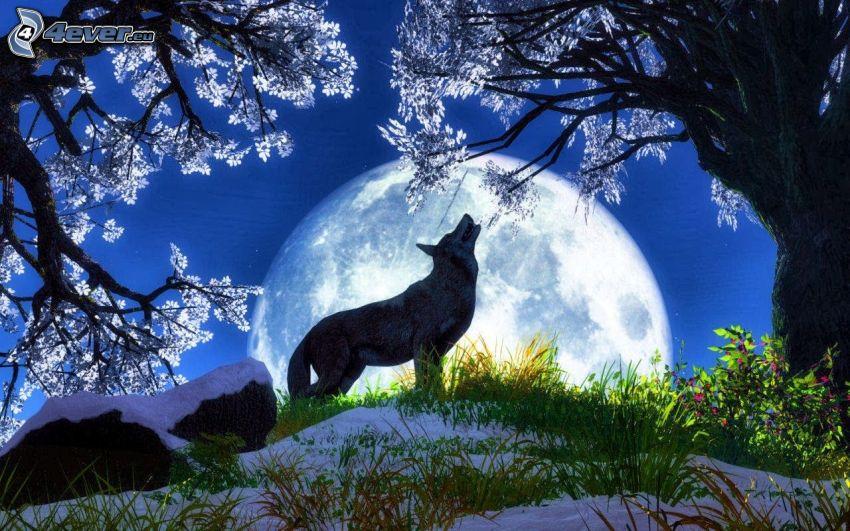 kreslený vlk, mesiac, zavýjanie, stromy