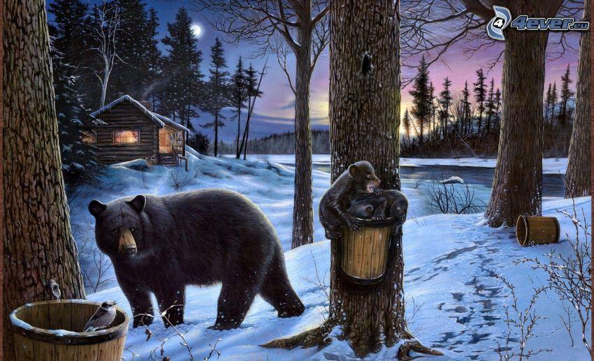 medvede, mláďatá, zasnežená krajina, večer