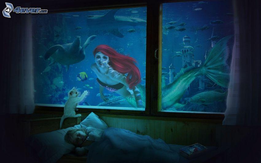 morská panna, okno, spiace dieťa, malé biele mačiatko