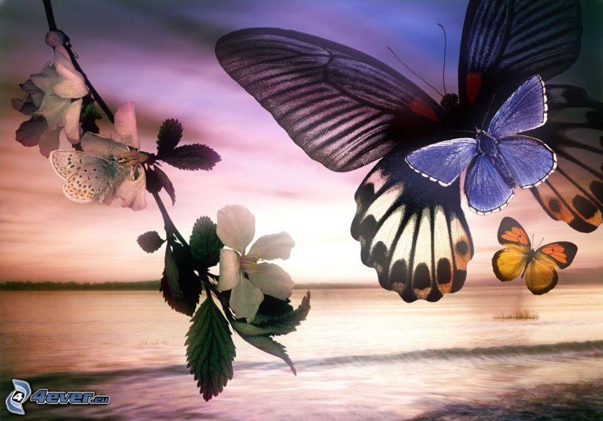 motýle, kvitnúci konárik