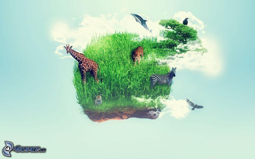 ostrov, zvieratá