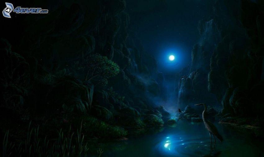 plameniak, voda, mesiac, noc, skaly, kreslená krajina