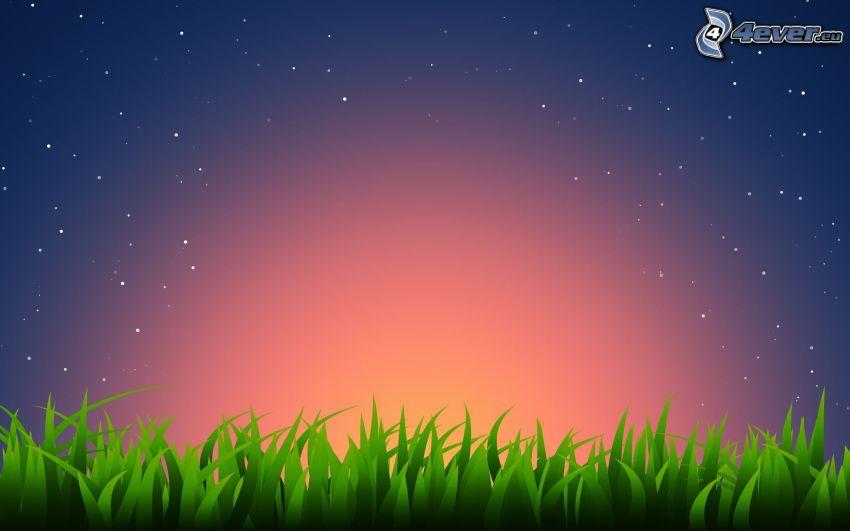 po západe slnka, tráva, hviezdna obloha