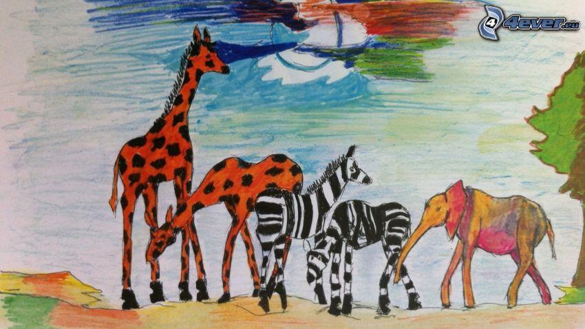 zvieratá, žirafy, zebry, slon