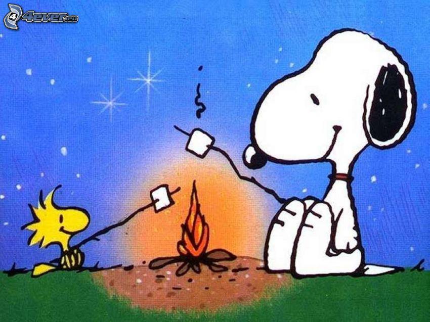 Snoopy, oheň, opekačka