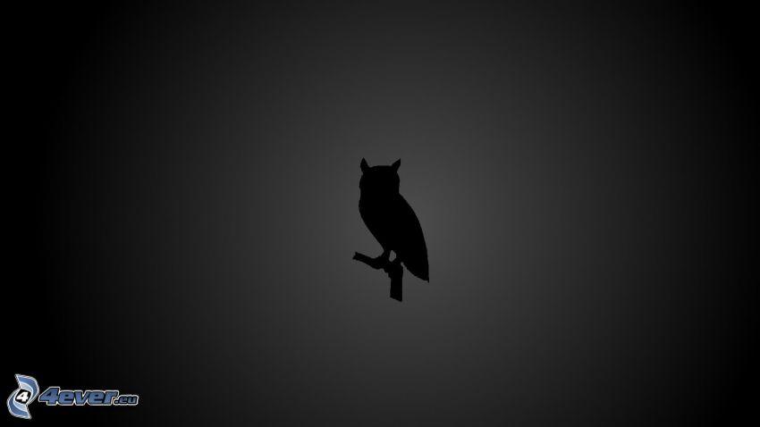 sova, silueta vtáčika