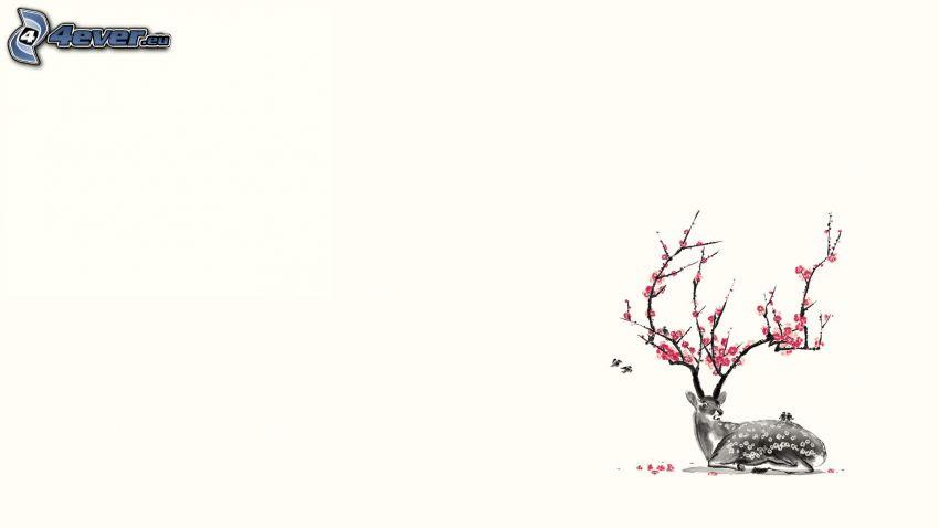 srnka, rozkvitnutý konár