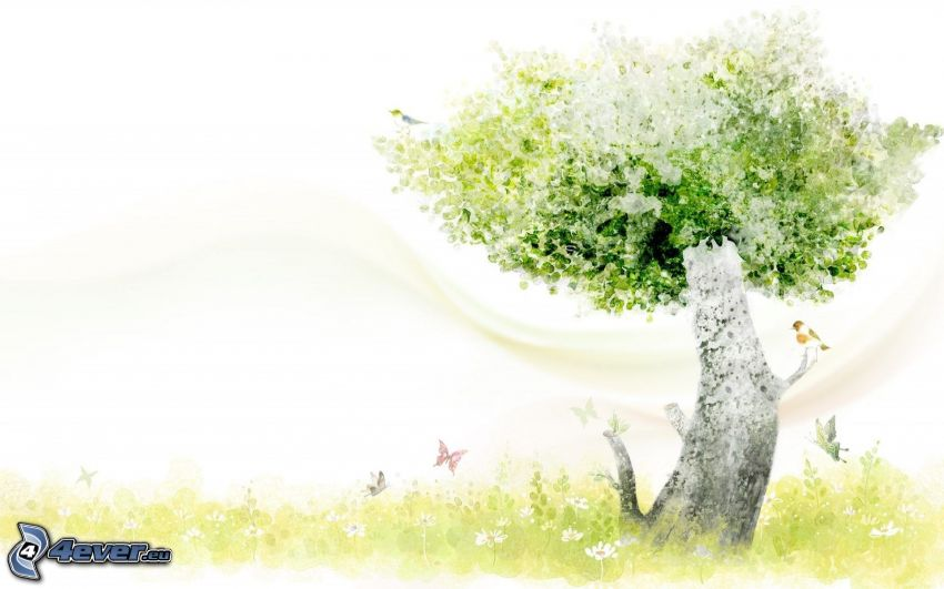 strom, motýle