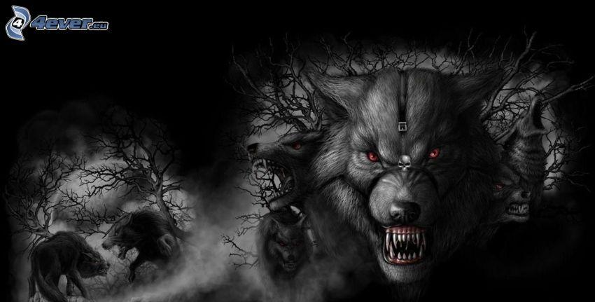 kreslené vlky