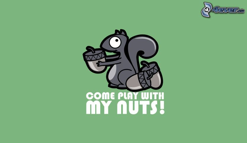 veverička, žalude, text