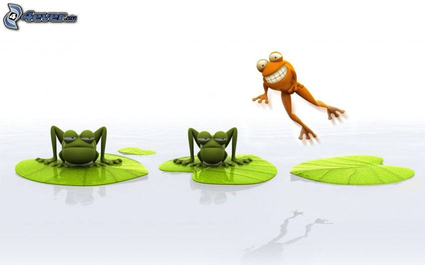 žaby, lekná