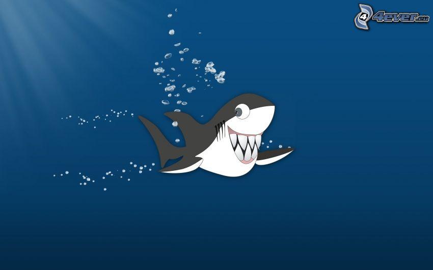 žralok, úsmev