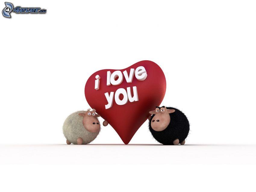 I love you, srdiečko, ovečky
