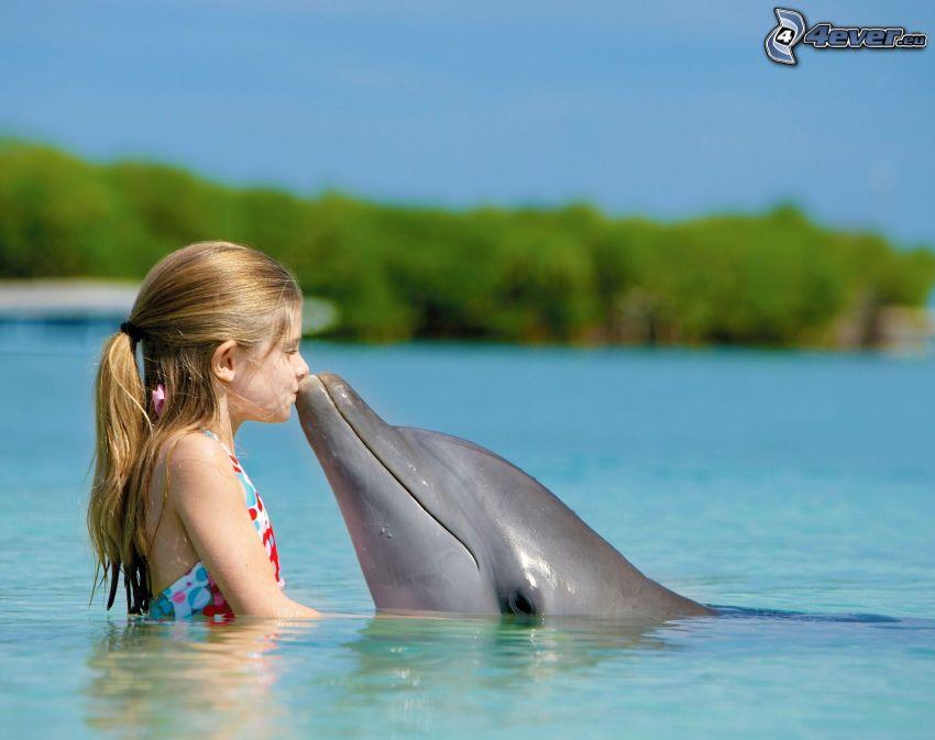 dievčatko, delfín, bozk, bazén