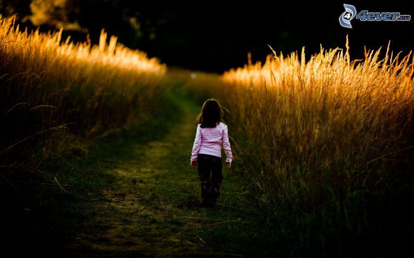 dievčatko, pole, cestička