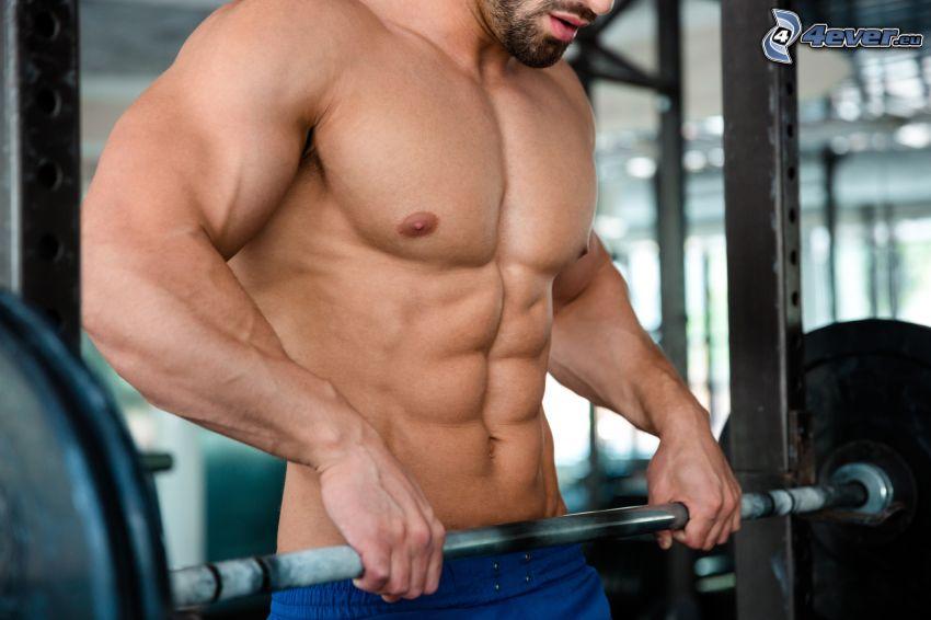 fitness tréner, tehličky, posilňovanie, bodybuilding, telocvičňa