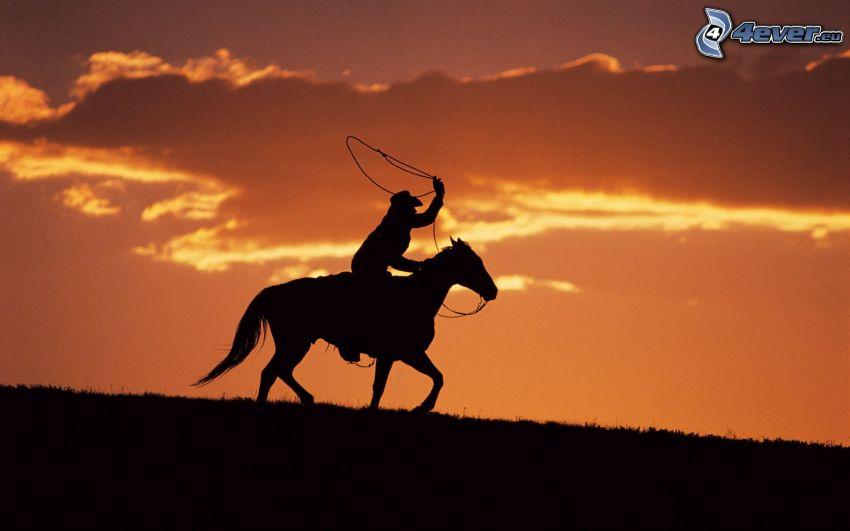 kovboj, silueta chlapa, kôň