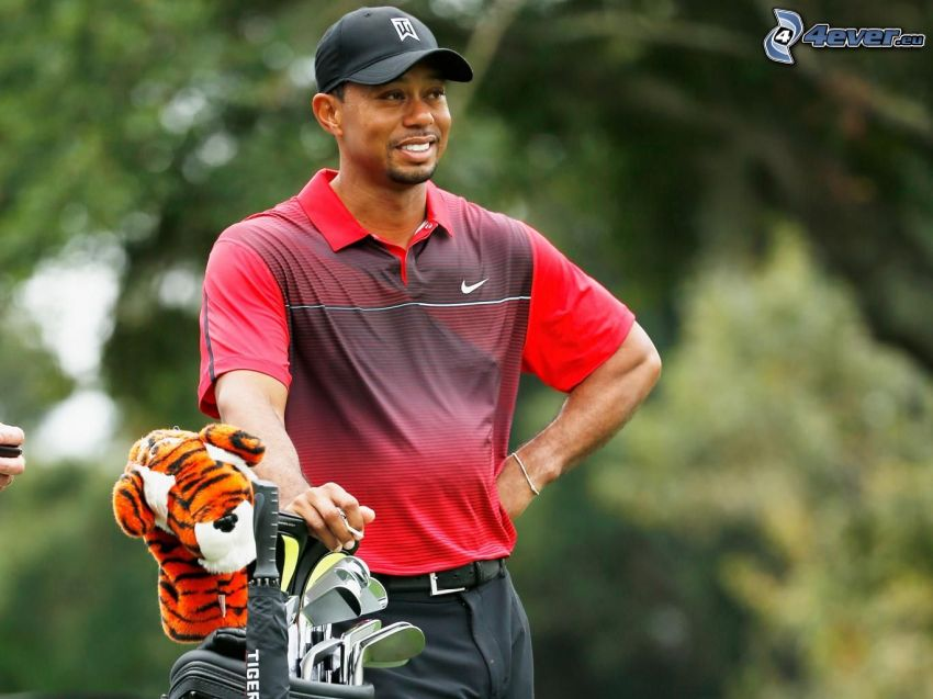 Tiger Woods, tiger, golfové palice