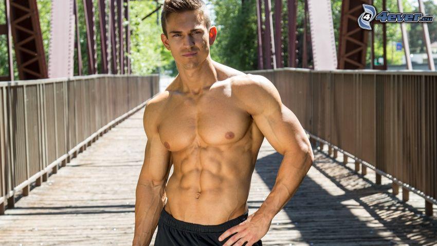 tehličky, most, svalnatý chlap