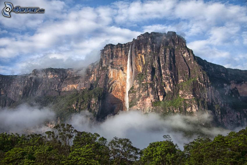 Angelov vodopád, útes, les, Venezuela