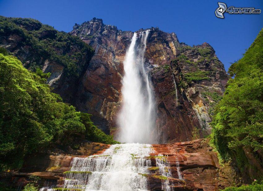 Angelov vodopád, útes, stromy, Venezuela