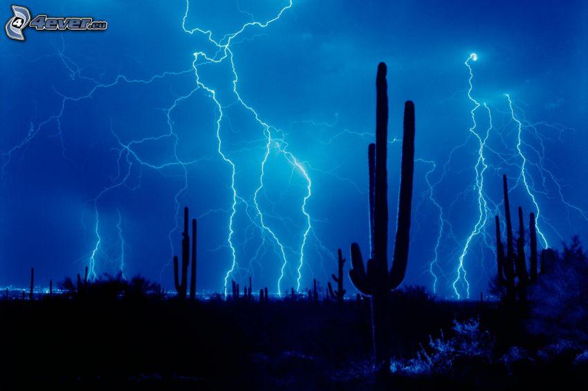 búrka, blesky, kaktusy