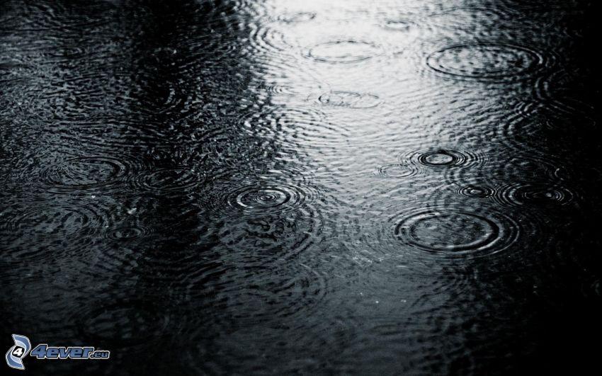dážď, kruhy na vode