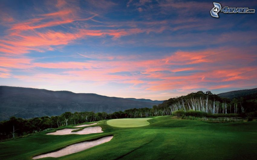 golfové ihrisko, les