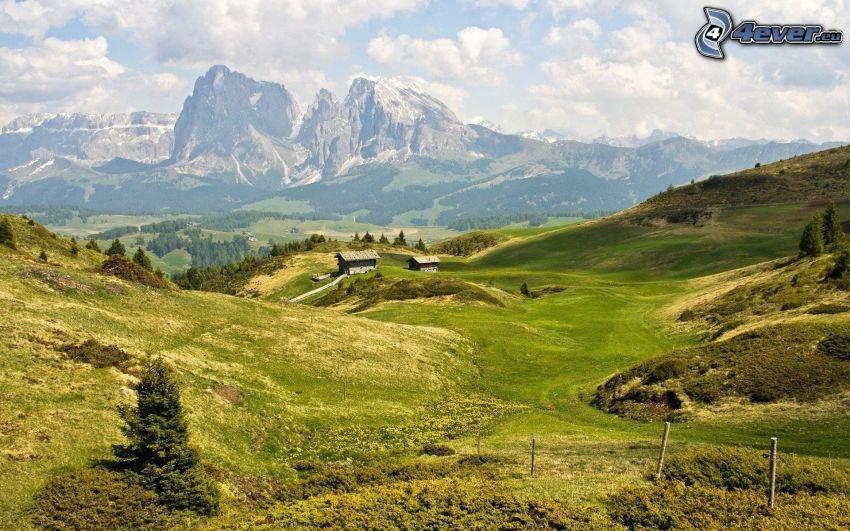 Alpy, skalnaté hory, údolie, lúka, domčeky
