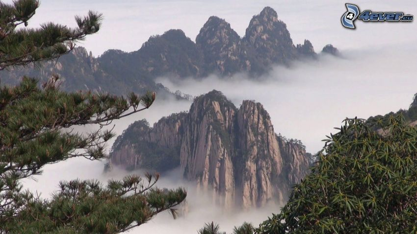 Huangshan, skalnaté hory, inverzia, ihličnaté stromy