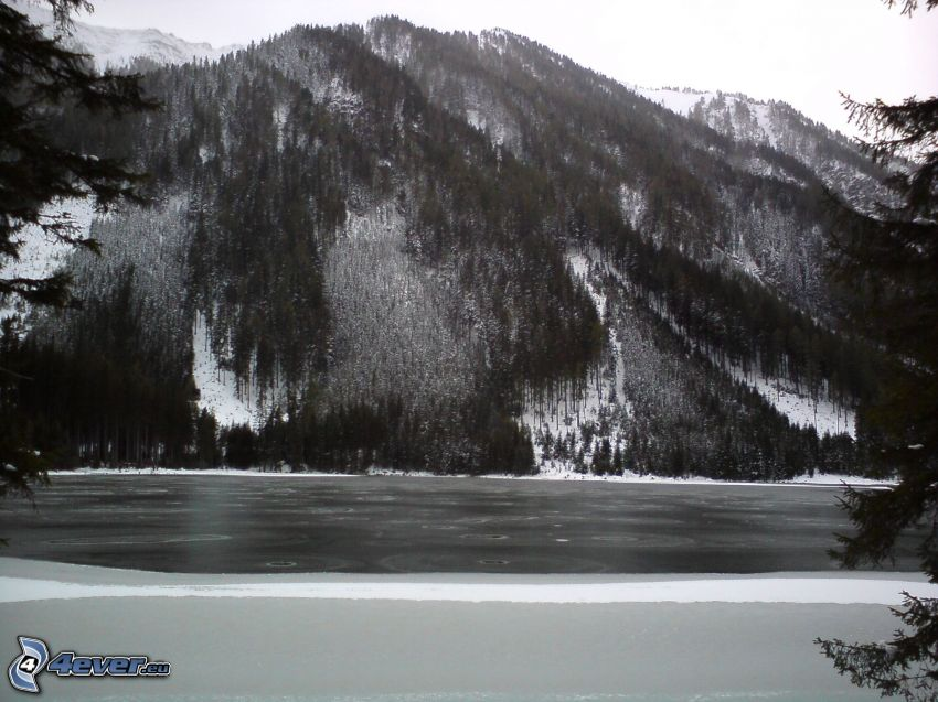 kopce, jazero, zima, čiernobiela fotka