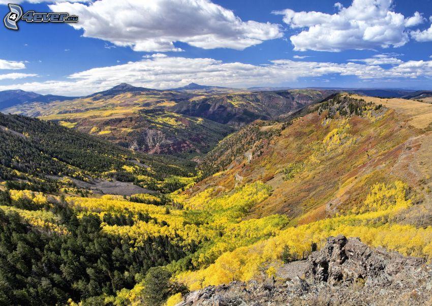 kopce, žlté stromy, oblaky