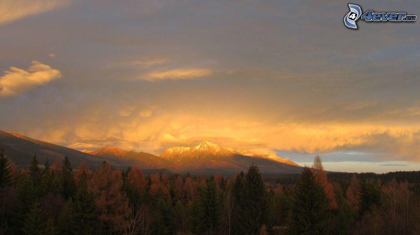 Kriváň, Vysoké Tatry, Slovensko, zasnežené hory, východ slnka, ihličnaté stromy, farebné jesenné stromy