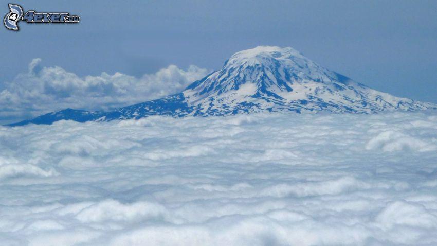 Mount Adams, zasnežená hora, nad oblakmi