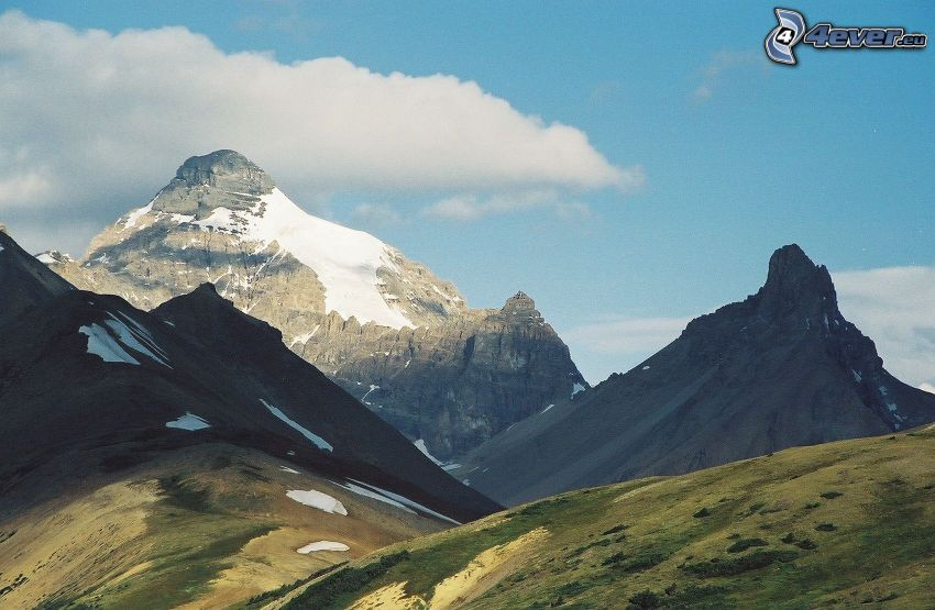 Mount Athabasca, skalnaté hory