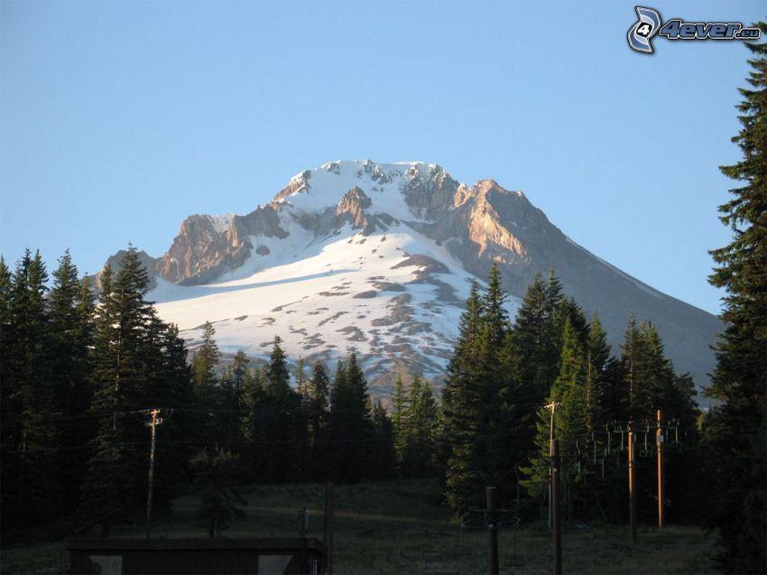 Mount Hood, zasnežená hora, lanovka, les