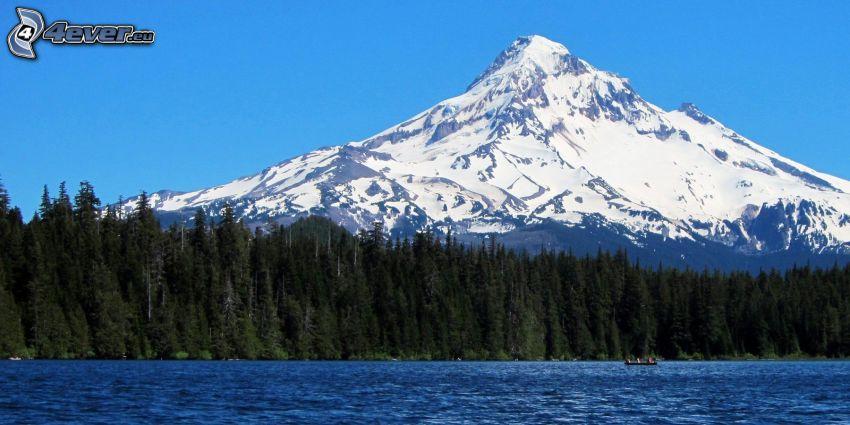 Mount Hood, zasnežená hora, les, jazero