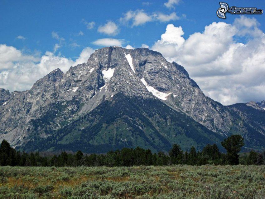 Mount Moran, Wyoming, skalnatá hora, oblaky, lúka
