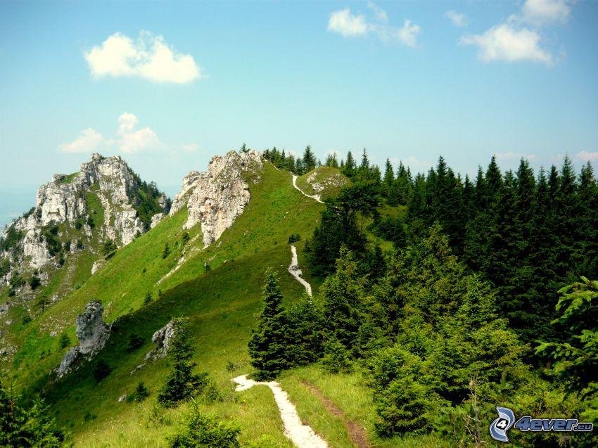 Ostrá, Veľká Fatra, Slovensko, skalnaté hory, turistický chodník