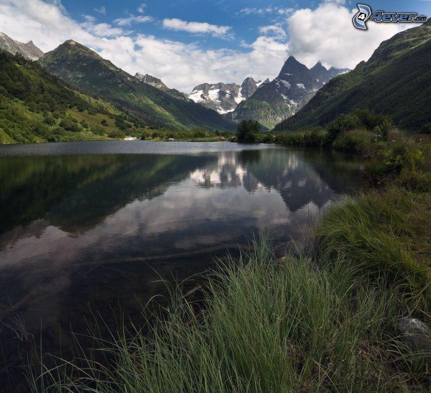 tráva na brehu jazera, zasnežené hory, vysoká tráva