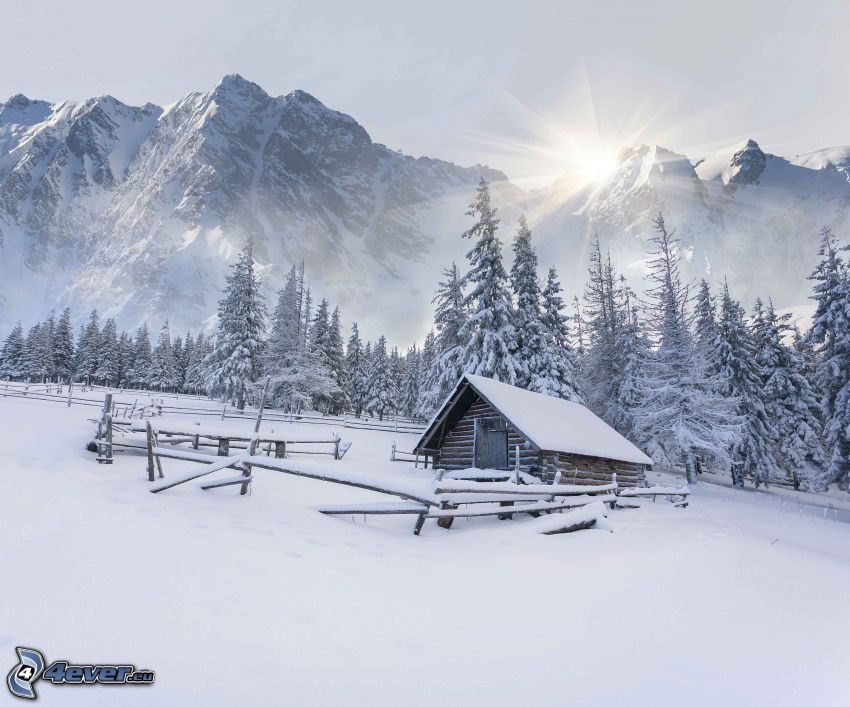 zasnežená chata, zasnežené stromy, zasnežené hory, slnko