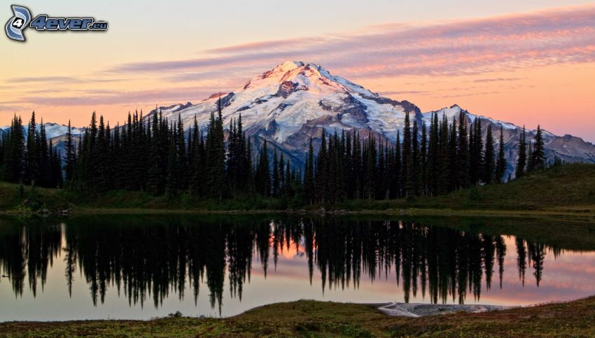 zasnežená hora nad jazerom, ihličnaté stromy, odraz, západ slnka