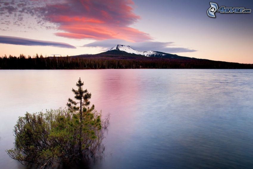 jazero, večer, zasnežená hora