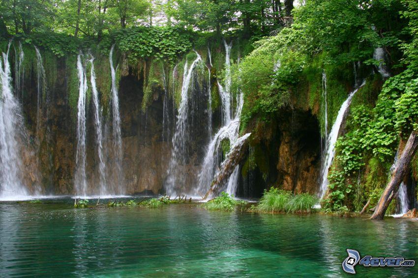 jazero v lese, vodopády, zeleň