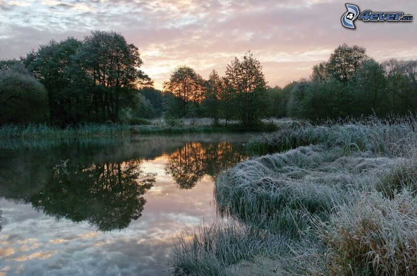 jazierko, západ slnka, zamrznutá tráva