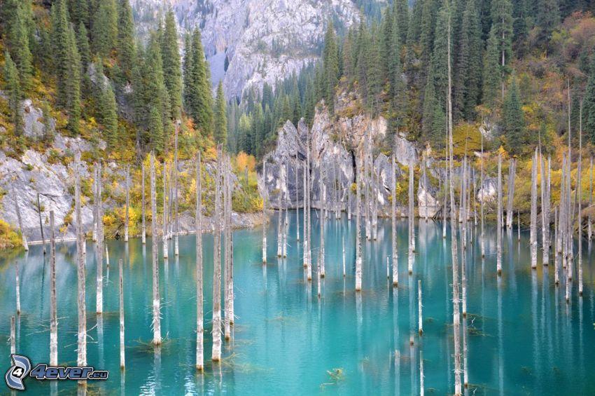 Kolsai Lakes, skaly, stromy